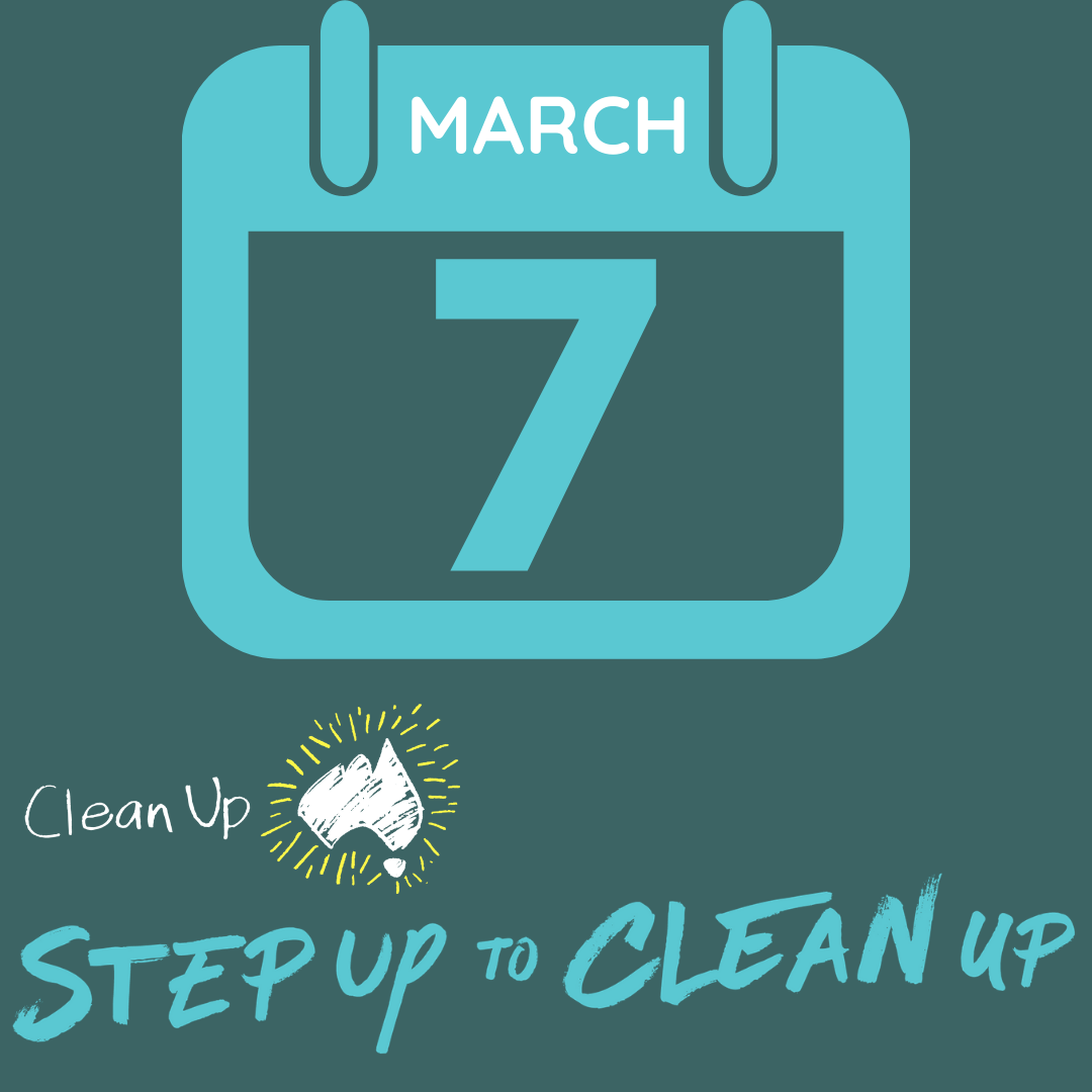 2021 Step Up to Clean Up - Instagram post